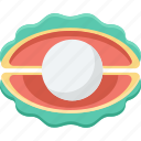 jewel, pearl, precious, sea shell, shell icon