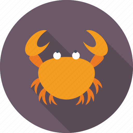 crab, fish, meat, sea, seafood icon