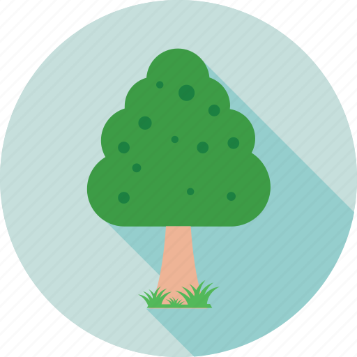 ecology, forest, nature, shrub tree, tree icon