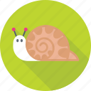 animal, nature, nautilus, slug, snail icon