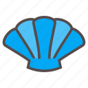 beach, collect, pearl, sea, seashell, shell, summer icon