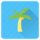 beach, coconut, island, palm, summer, tree, vacation icon