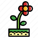 flower, garden, nature, plant icon