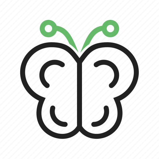 butterfly, flowers, garden, insect, nature icon