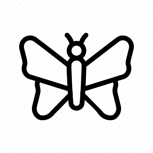 butterfly, insect, summer icon