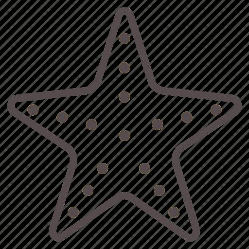 beach, fish, ocean, star, starfish, summer, vacation icon