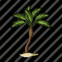 accessory, beach, palm, recreation, rest, summer, tree