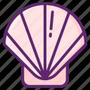 sea, seashell, shell