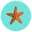 favorite, ocean, sea, star icon