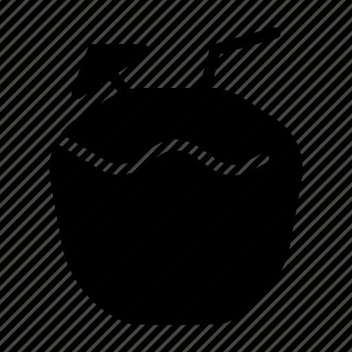Coconut, drink, fruit, summer, trophical icon - Download on Iconfinder