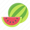 summer, food, watermelon, fruit icon