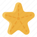 animal, sea stars, starfish, summer icon