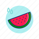 fresh, fruit, melon, summer, vibes, water, watermelon icon