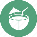 coconut, food, fruit, water icon