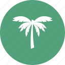 beach, coconut, tree, wave icon