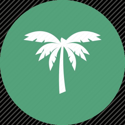 beach, coconut, tree, wave icon