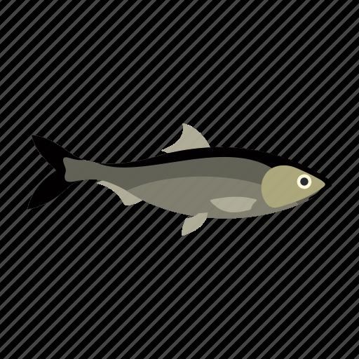 animal, aquatic, fish, food, nature, ocean, sea icon