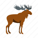 animal, deer, mammal, moose, nature, wild, wildlife icon