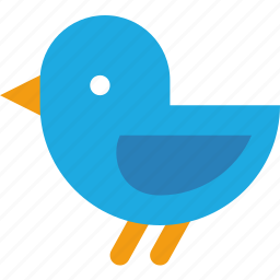 bird, fly, tweet, twitter icon