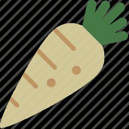 farm, garden, healthy, parsnip, vegetable icon