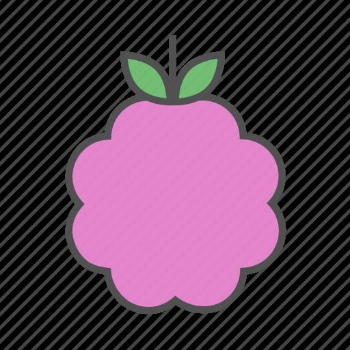 berry, fresh, fruit, healthy, raspberry, summer, tasty icon