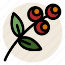 flower, herb, herbal tea, pnat, rose hip, rosehip, tea icon
