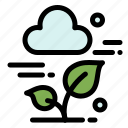 cloud, leaf, plant, technology