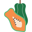 cut, fruit, half, organic, papaya, ripe, tropical icon