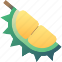 durian, fruit, kanyao, ripe, thai, thailand, tropical
