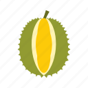 durian, food, fresh, fruit, nature, thorn, tropical icon