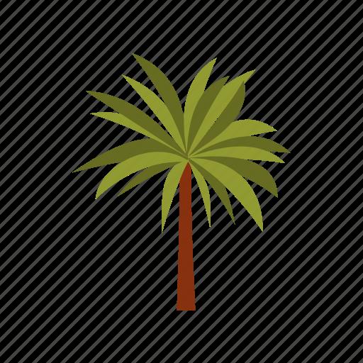 beach, exotic, leaf, nature, palma, summer, tropic icon