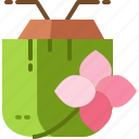 coconut, drink, flower, plumeria, thailand, tropical