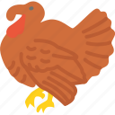 animal, holidays, meat, thanksgiving, turkey icon