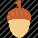 acorn, holidays, thanksgiving icon
