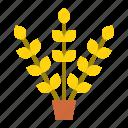 fall, grain, pot, thanksgiving, wheat icon