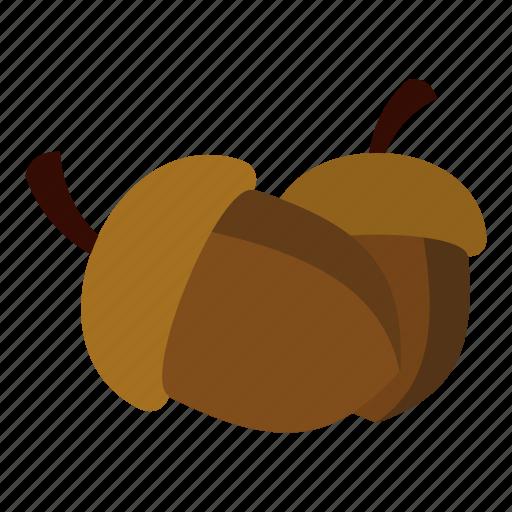 acorn, blog, nature, nut, oak, plant, two icon