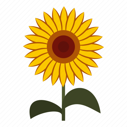 flower, nature, petal, plant, seed, summer, sun icon
