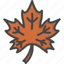 colored, holidays, leaf, maple, thanksgiving icon