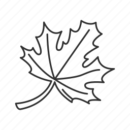 canada, fall, fall leaves, leaf, leaves, maple leaf, one leaf icon