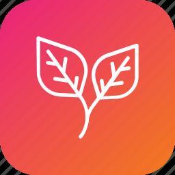 greenery, leaf, plant, thanksgiving icon
