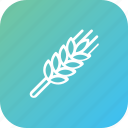 grain, harvest, thanksgiving, wheat icon