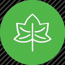 autumn, leaf, plant, thanksgiving icon