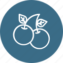 berries, cherry, sweet, thanksgiving icon