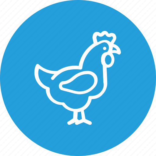 bird, chicken, food, hen, thanksgiving, turkey icon