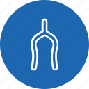 superstition, thanksgiving, tradition, wishbone icon