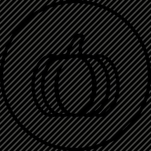 pumpkin, thanksgiving icon