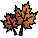 autumn, dry, fall, leaves, maple, nature icon