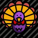 animal, chicken, farming, thasnkgiving, turkey