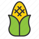 corn, food, thanksgiving, vegetable icon