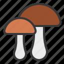 fungi, mushroom, thanksgiving icon